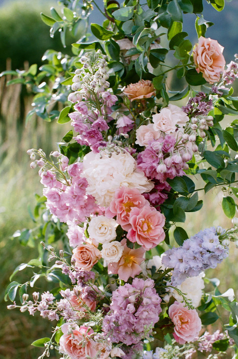 Pink and Purple Roses and Delphinium