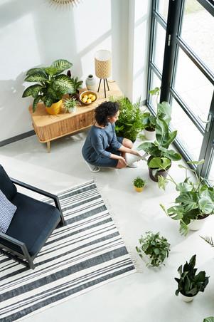 ELHO Indoor&Outdoor Raamsdonk11273.jpg