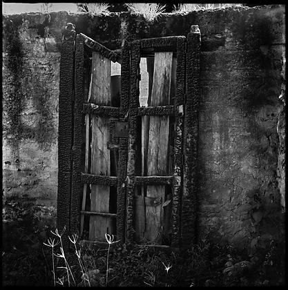 Edson Caballero  // Puerta Carbón