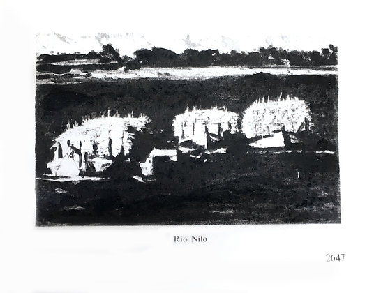 Julio Barrita // Nueva Naturaleza, Rio Nilo