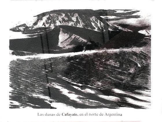 Julio Barrita // Nueva Naturaleza, Cafayate