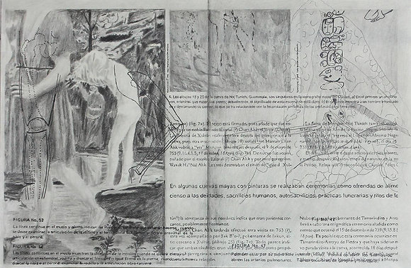 Plinio Villagrán // Serie Anatomía Comparativa