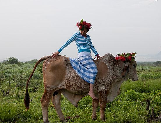 Claudia Terroso  // Mujer sobre el toro
