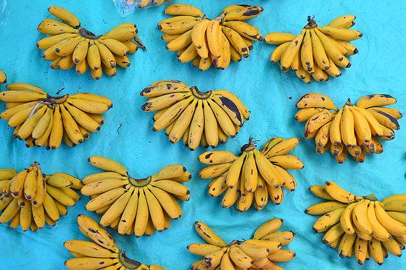 Saabianni Labastida // Plátanos de Ocotlán