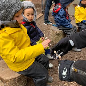 Devices, Spring Break, Parent Teacher Interviews