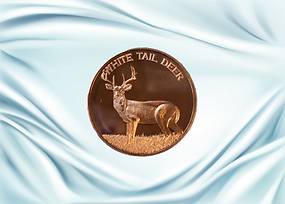 white tail deer front 2.png