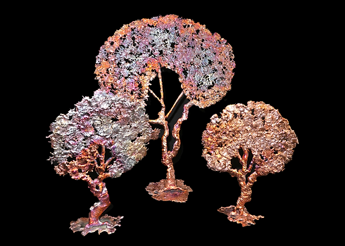 21 splash copper trees.png