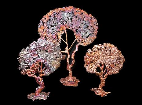 21 splash copper trees.png