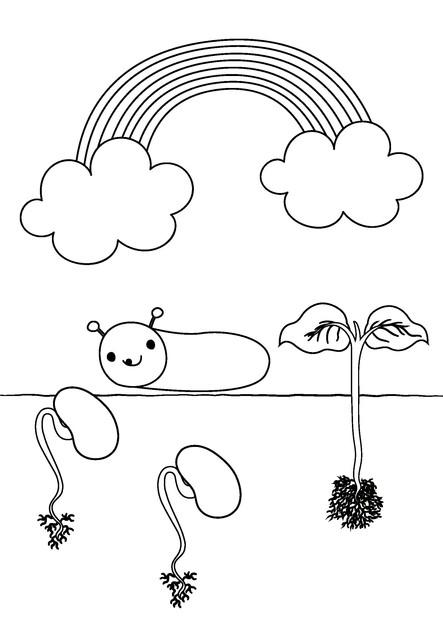 Colora Orto e i semini
