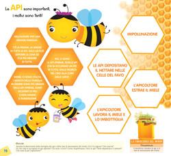 Le api sono importanti