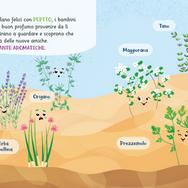 le erbe aromatiche.png