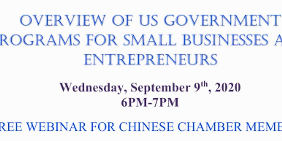 Overview of US Govt Programs for Small Businesses & Entrepreneurs