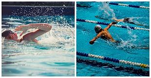 Swim1.png