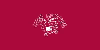 Mini Maroons.png
