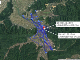 GPS情報 J0097♂・J0015♀ 2018.11.21.18:00~2018.11.28.16:00