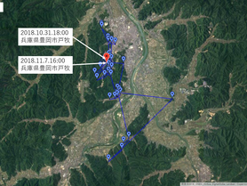 GPS情報 J0097♂・J0015♀ 2018.10.31.18:00~2018.11.7.14:00,16:00
