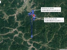GPS情報 J0097♂ 2018.8.15.18:00~2018.8.22.16:00