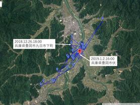GPS情報 J0097♂・J0015♀ 2018.12.26.18:00~2019.1.2.16:00