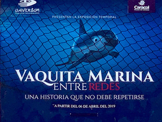 El Museo de la Ballena y Ciencias del Mar