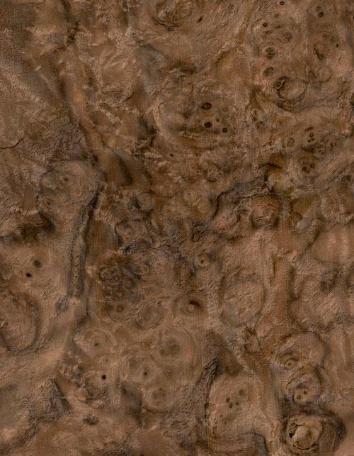 48-07-胡桃樹瘤WALNUT-BURL