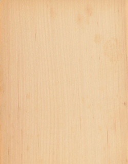 12-楓木直紋MAPLE-QUARTER