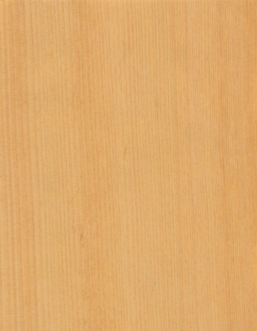 04-台檜直紋-TAIWAN-CYPRESS-QUARTER