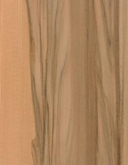 49-緞翅木RED-GUM