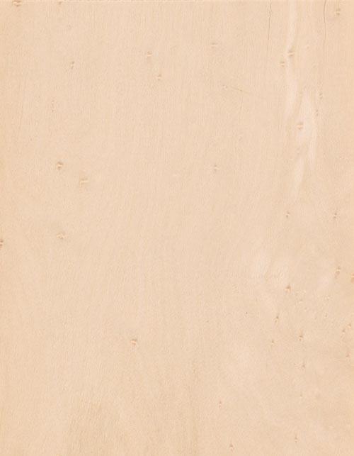 12E-楓木鳥眼BIRD'S-EYE-MAPLE