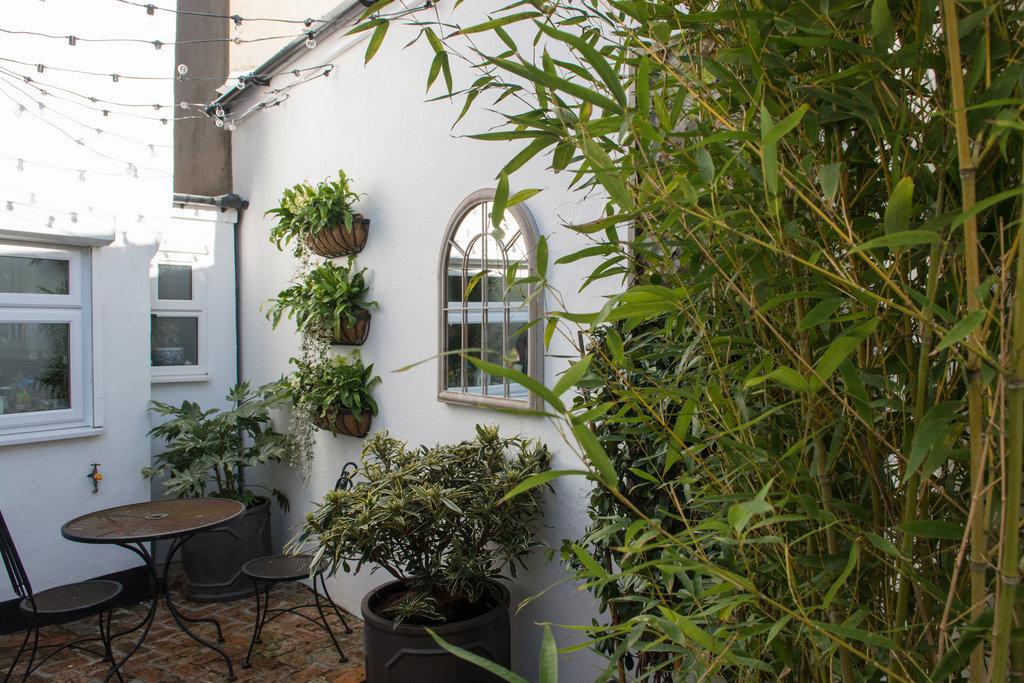 Reigate courtyard garden