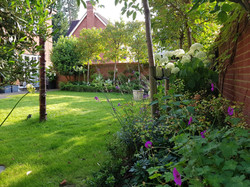 Summer lawn