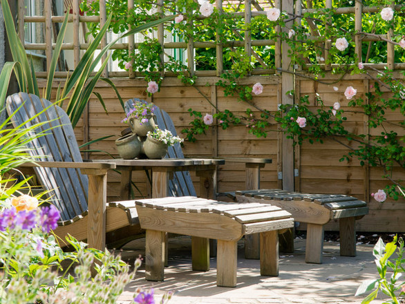 Cottage Garden, Reigate