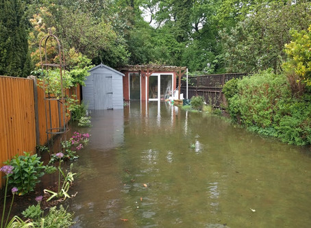 Storm-Battered Gardens: 10 Tips to get Back in Control.