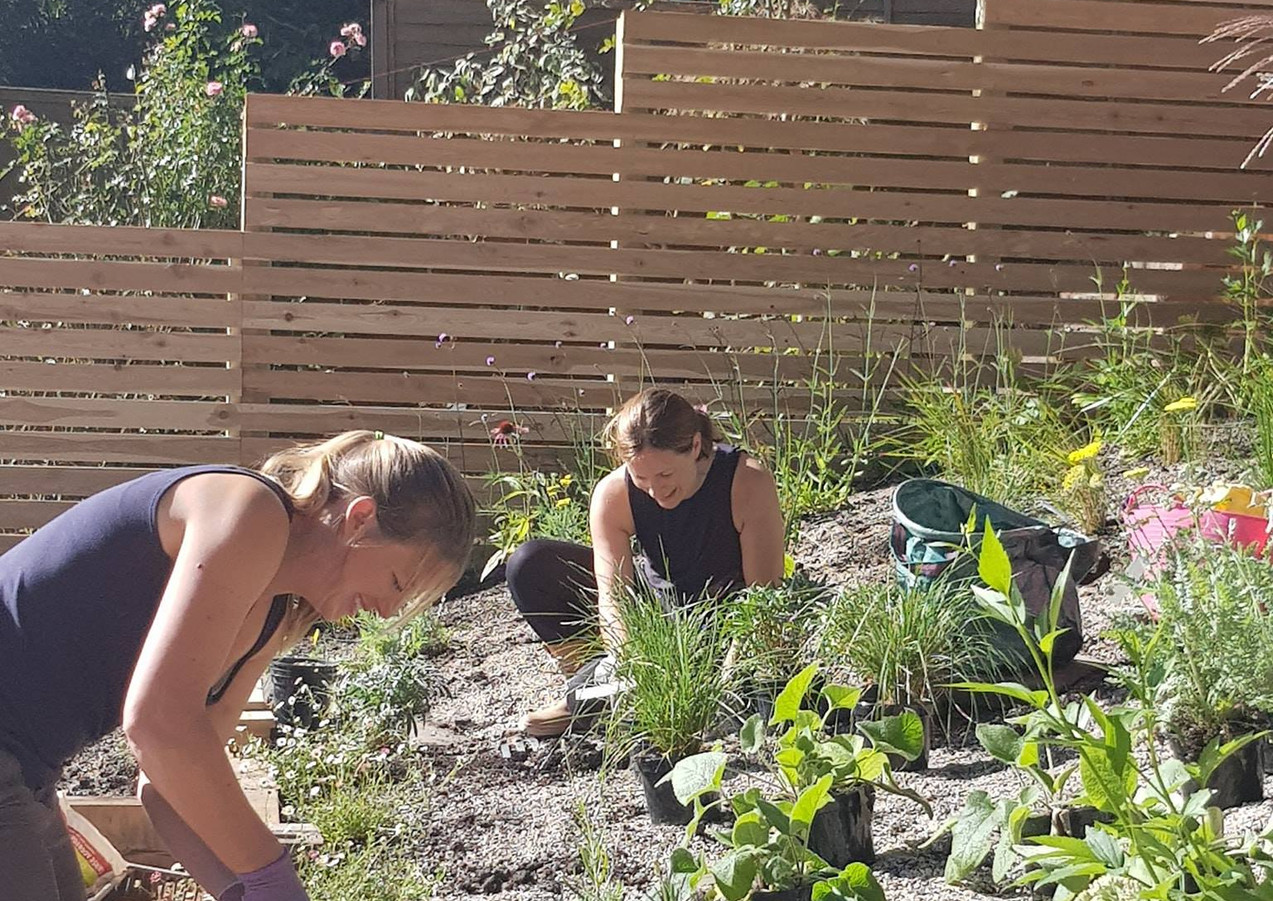 Laura's Gardens and gardeners