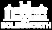 T&E - LOGOS FOR WEBSITE-01.png