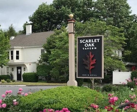 scarlet oak.jpg