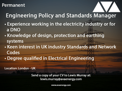 Engineering policy and standards manager