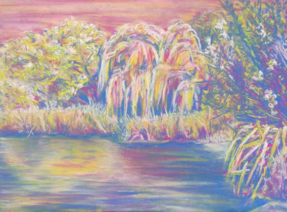 Barnes Pond in Colour