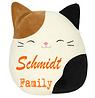 schmidt.png