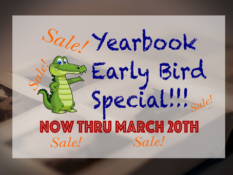 Early bird pricing!