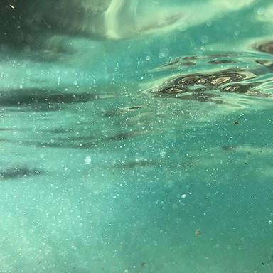 S U B M E R G E D_———————————————————_#summer🌴🌊☀️ #Bondi #motivation #northbondi #fitfam #home #sun #sand #surf #travel #landmarks #thegoodl