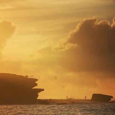 O N  P O I N T_————————————————_#spring🌼  #Bondi #Bronte #motivation #northbondi #fitfam #summer #home  #sunset #sun #sand #surf #travel #la