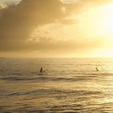 G O L D E N  H O U R ————————————————_#summer🌴🌊☀️ #Bondi #Bronte #motivation #northbondi #fitfam #home #sun #sand #surf #travel #landmarks #