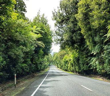 N E W  Z E A L A N D_Day 2_Rotorua to Gi