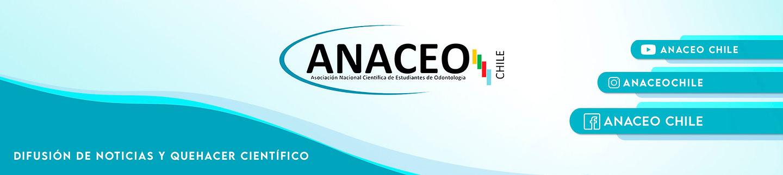 Banner web 1.jpg