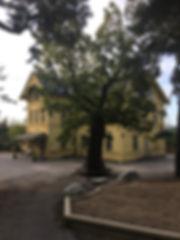 Skolhus.JPG
