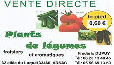 plants de legumes frederic dupuy