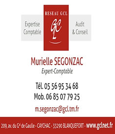expertise comptable murielle segonzac