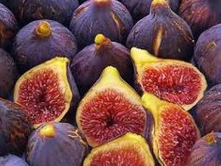 Best Fig Varieties to Choose to Grow in Home Gardens