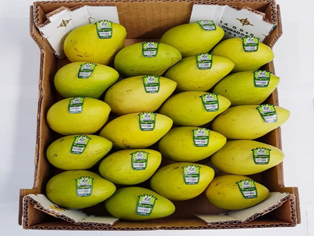 Different Varieties of Mangoes Complimenting Mexican Cuisines