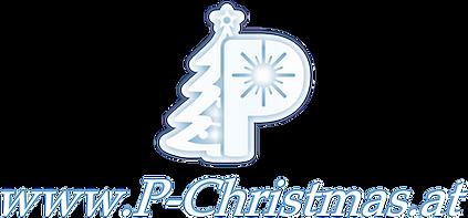 Logo-icon+web-Winter_1.1.png